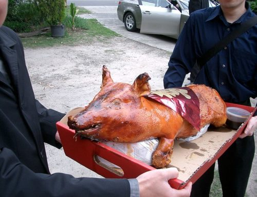 HOG ROAST COOKING AROUND THE WORLD