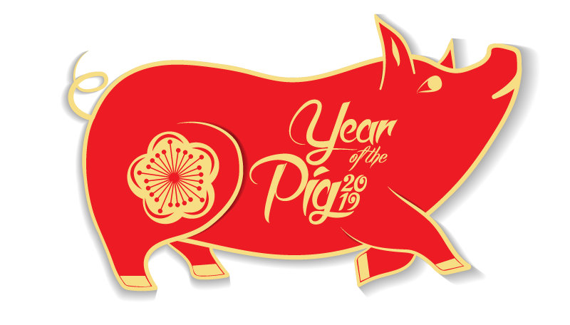 Chinese-Year-of-the-Pig
